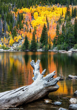 Bear Lake Fall-2